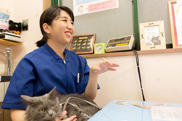 ネコちゃんにとっての「優しい診療」を心がけています
